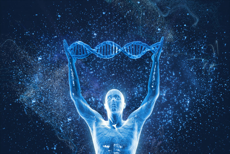 modern humans descended from single couple dna