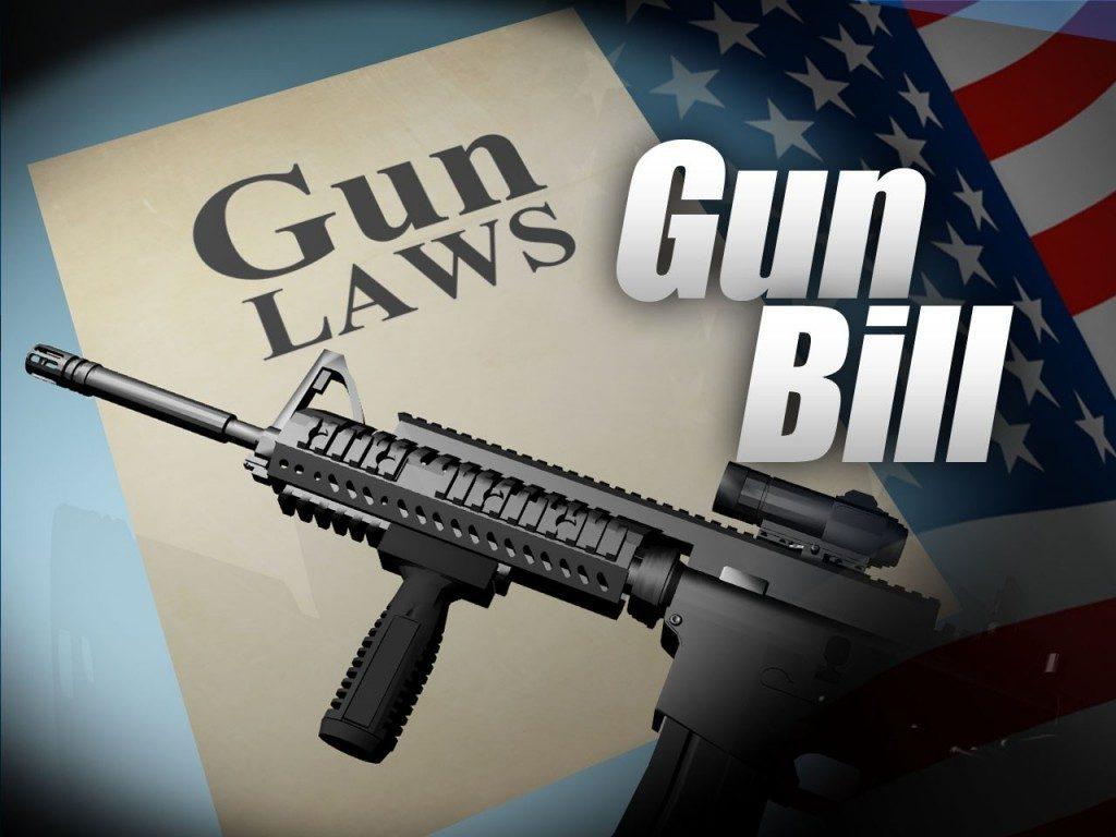 new york gun bill social media passwords internet history