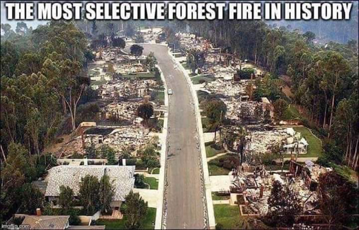 the most selective forest fire in history directed energy weapons