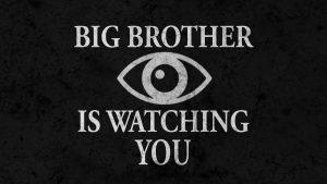 Big Brother Is Watching You Amazon Orwellian