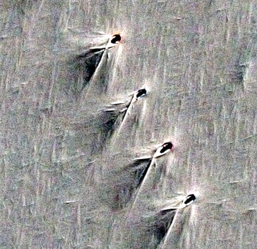 Strange Structures Found In Antarctica 4