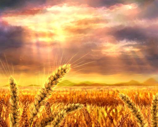 Biblical Revelation