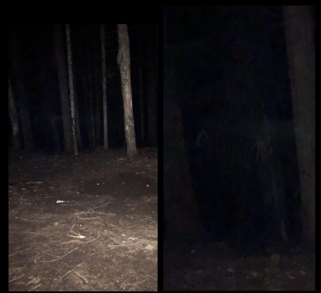 Ghost Witch Skinwalker Mt Hood Woods Oregon 1