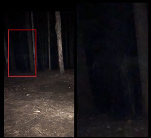 Ghost Witch Skinwalker Mt Hood Woods Oregon Featured