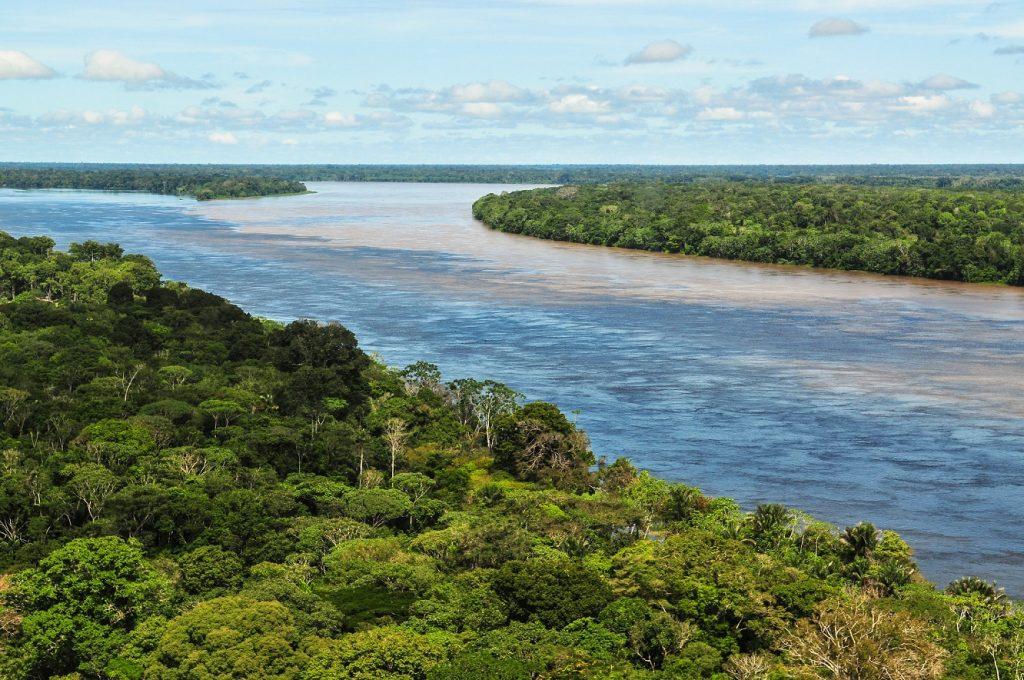 Brazil Amazon Coronavirus Strain